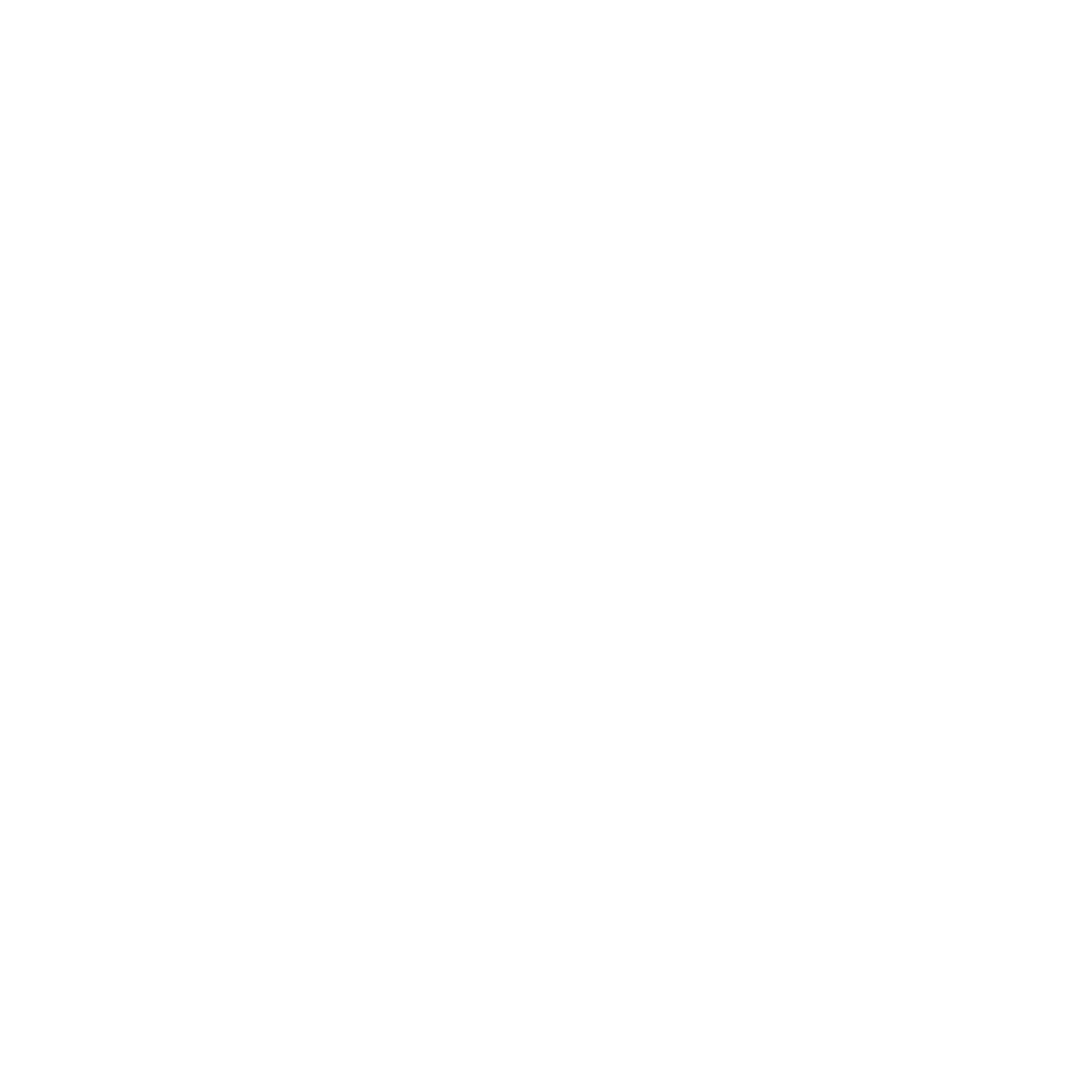 BCS Icon White